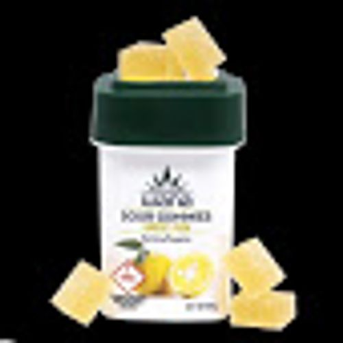 Wana 1000mg Yuzu Gummy Sativa
