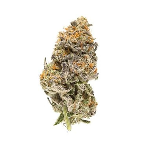 Grape Sugar Cookies 1/8 (Hybrid) - (BG)