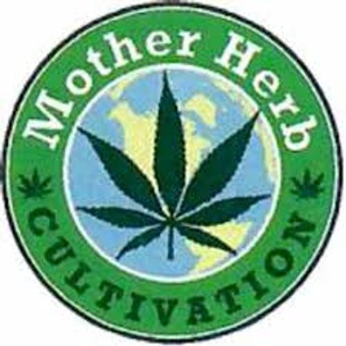Mother Herb Flower- Brian Berry Cough - 3.5G
