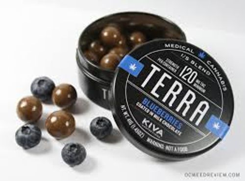 Milk Chocolate Blueberry Terra Bites