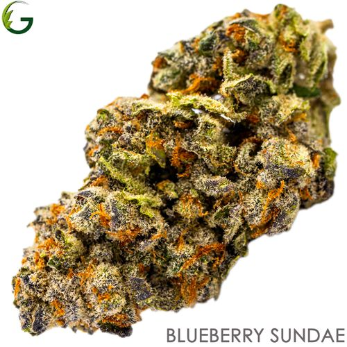 Blueberry Sundae (I) 7g