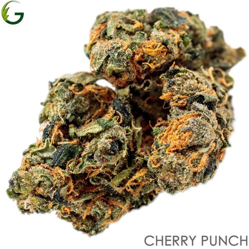 Cherry Punch (I/H) 1g