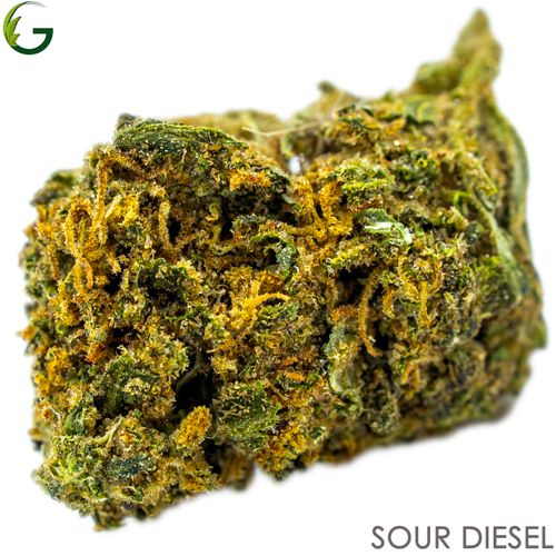 Sour Diesel (S) 1g (Medical Only)