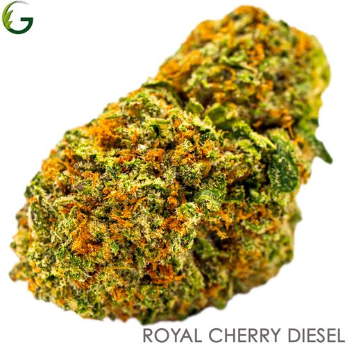 Royal Cherry Diesel (S/H) 3.5g