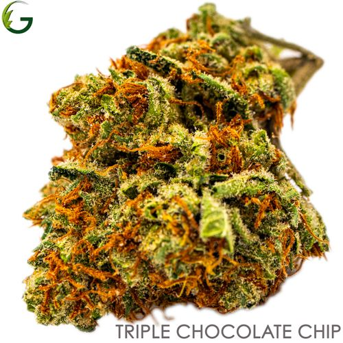 Triple Chocolate Chip (I) 3.5g