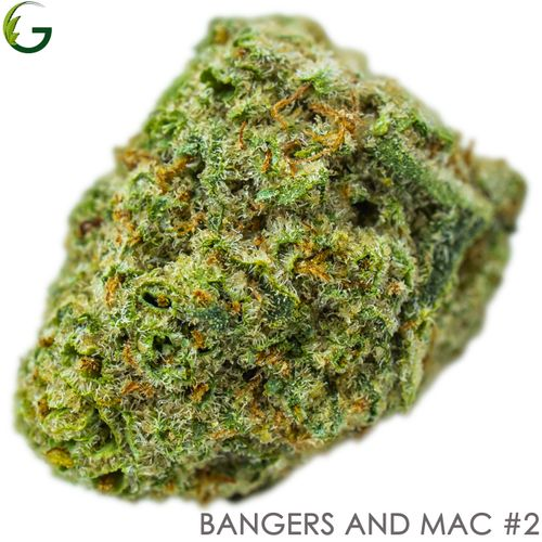 Bangers and Mac #2 (H) 1g (Medical Only)