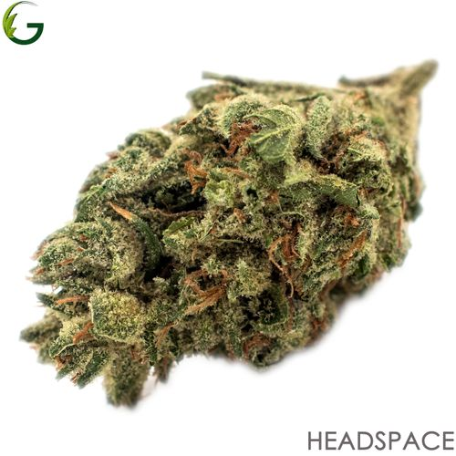 Headspace (H) 1g (Medical Only)