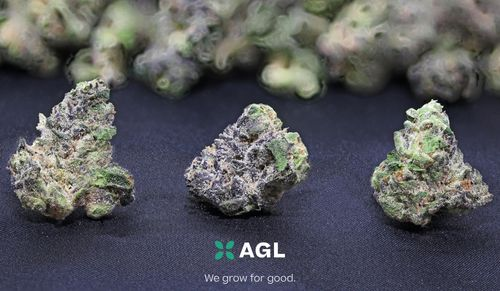 Indicol BC Second Cut 22.46 NDC: 9979 - 3.5g (AGL)