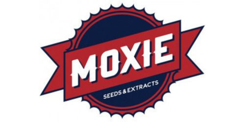 Moxie Cartridge - Kryptonite 500mg