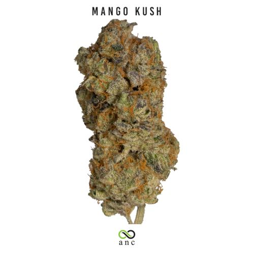 Mango Kush | Top Shelf