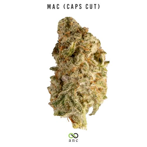 MAC Caps Cut (I) | Top Shelf