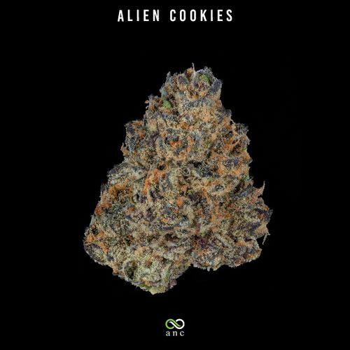 Alien Cookies (H) | Top Shelf