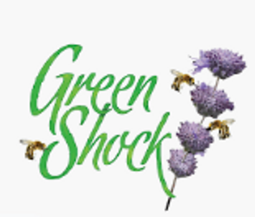 GreenShock-Purple Sleigh Ride 3.5g
