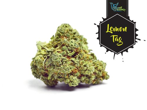 Lemon Tag (Sativa Hybrid) - 1/8
